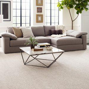 Modern living room | Masters And Petersens Flooring