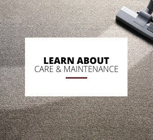 Learn about care and maintenance | Masters And Petersens Flooring