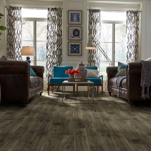 Shaw Adirondack Vinyl | Masters And Petersens Flooring