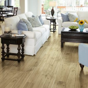 Shaw Floors Adirondack Surrey | Masters And Petersens Flooring