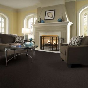 Shaw Floors Carpeting | Masters And Petersens Flooring