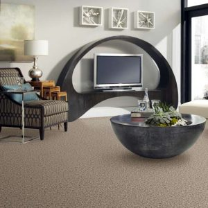 Shaw Floors Sophisticated Space | Masters And Petersens Flooring
