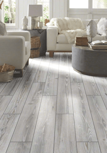 Traditions shaw tile | Masters And Petersens Flooring